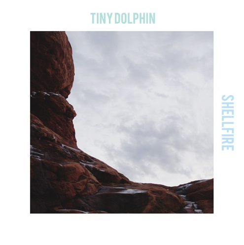 Tiny Dolphin - Shellfire